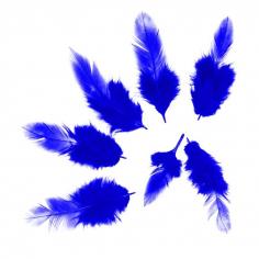 Перья Синие, 50 шт