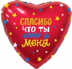 Шар Сердце Спасибо, что ты есть у меня!, Красный (в упаковке)