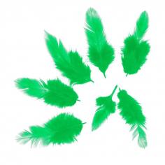 Перья Зеленые, 50 шт