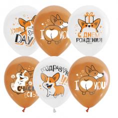 Шар Корги С Днем Рождения, Белый и оранжевый 1 ст 2 цв