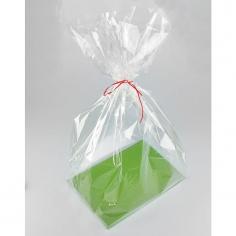 Пакет с жестким дном прозрачный (ассорти)