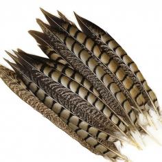 Перья фазана длинные Натуральный цвет