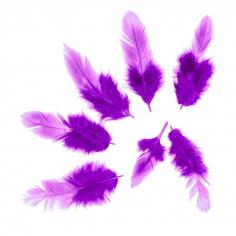 Перья Фиолетовые, 50 шт