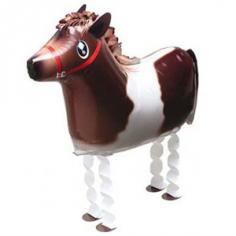 Шар Ходячая фигура, Лошадь