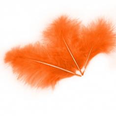 Перья Оранжевые, 30 шт