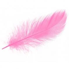 Перья Нежно-розовые 14-17 см
